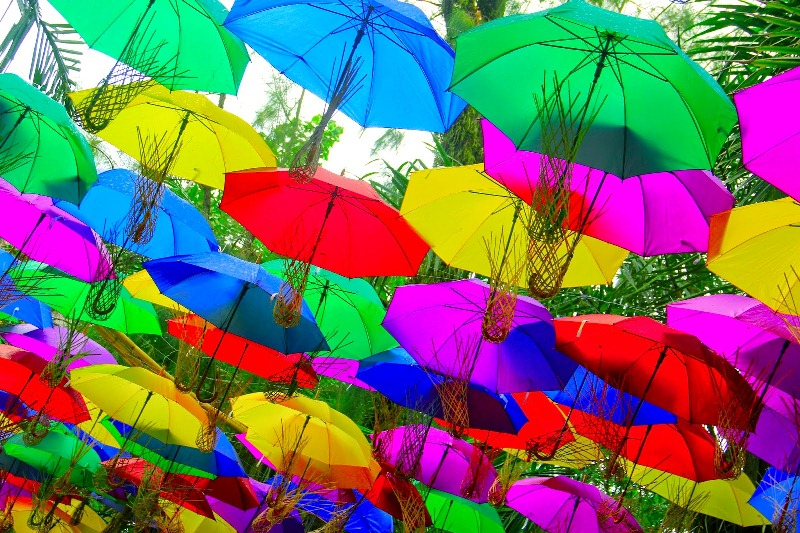 x-payung